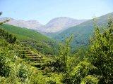 Vale de Loriga